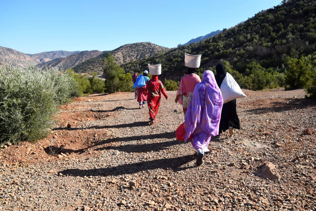 EBM - women carrying buckets of argan fruit on their head