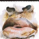 emma_blake_morsi_lip_diaries_1